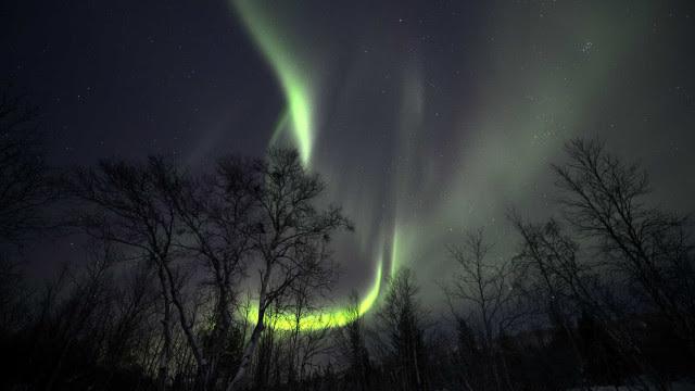 Novo estudo prova a misteriosa origem das auroras boreais