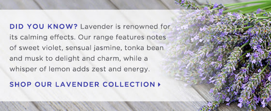 Did you know? Lavender is renowned for its calming effects. Our range features notes of sweet violet, sensual jasmine, tonka bean and musk to delight and charm, while a whisper of lemon adds zest and energy. Shop Our Lavender Collection