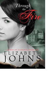 Through the Fire by Elizabeth Johns