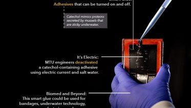 Catechol Containing Smart Glue