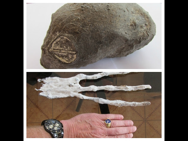 Two Strange Organic Artifacts Found In The Desert Of Nazca In Peru  Sddefault