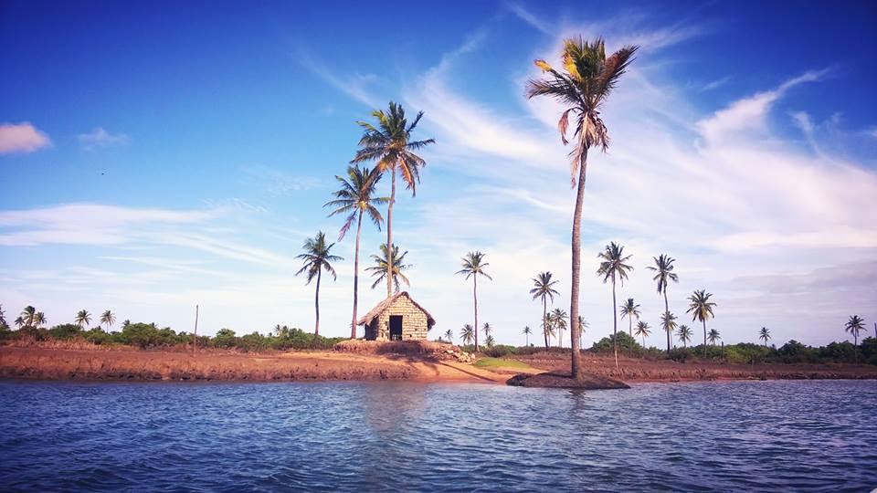 Uma das paisagens que se pode ver do passeio de barco até o encontro do rio com o mar em Piaçabuçu, Alagoas.