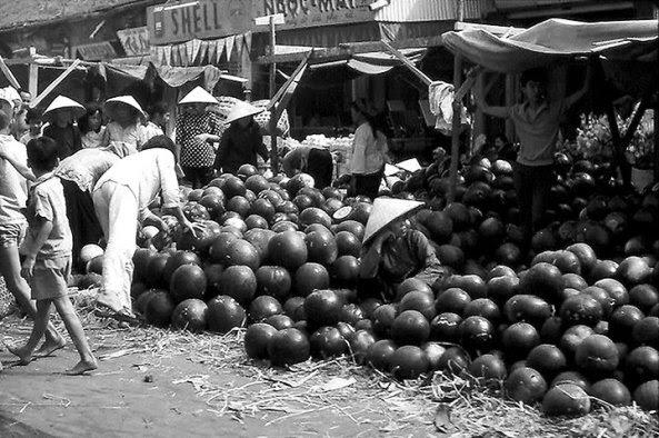 Dưa hấu  Sài Gòn giáp Tết