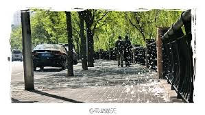 Image result for 惟解漫天作雪飛。