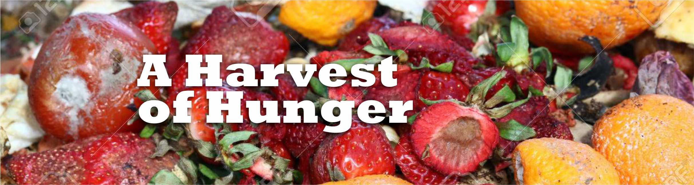 A Harvest of Hunger