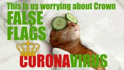 false flag cat coronavirus