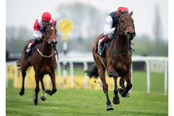 Star Catcher has progressed from a maiden win in April to her group 2 victory at Royal Ascot