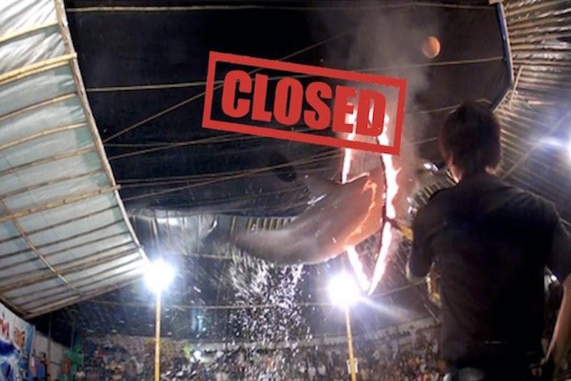 Indonesia's traveling circus shut down!