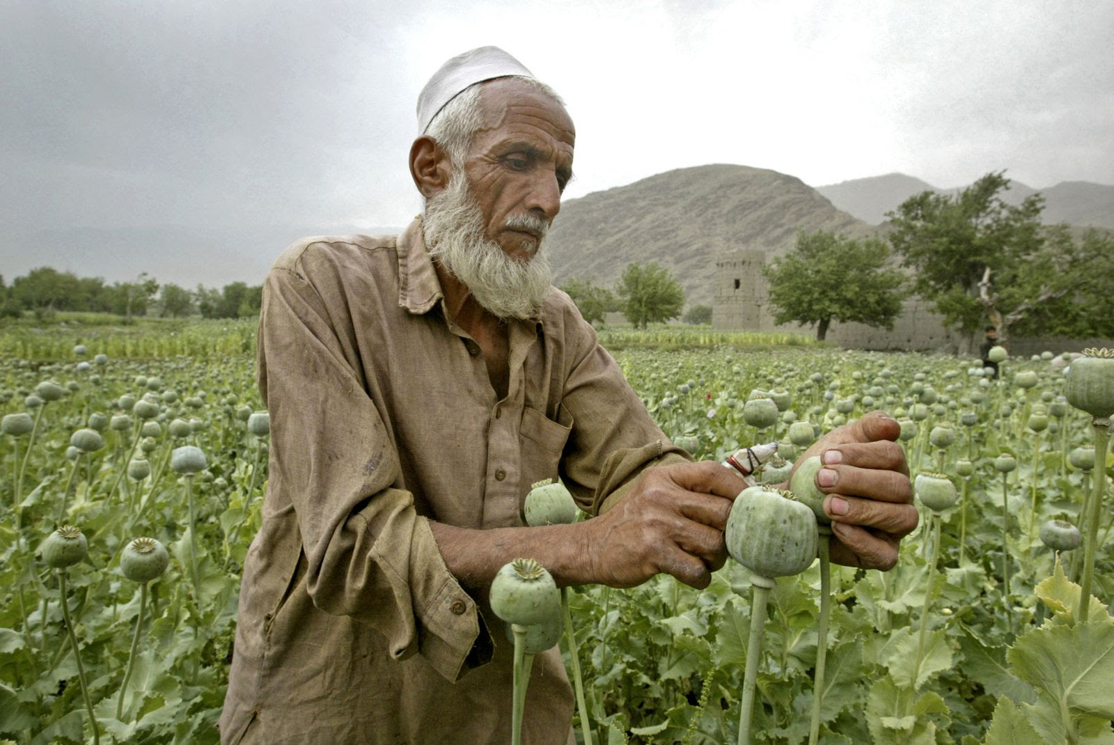 Inside Afghanistan: Life and the art of the barter