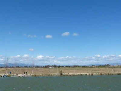 Detalle del Delta del Ebro.