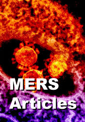 MERS Articles