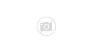 New Black Panther Party Logo Black Panther Party