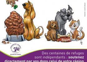 Ne pas confondre  SPA confédération de France et La SPA de Paris  Spa_fb