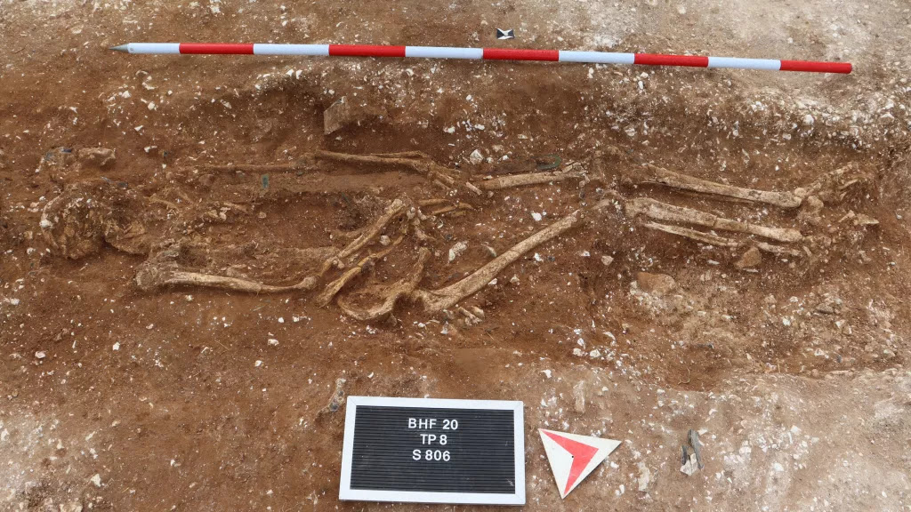 Anglo-Saxon warlord unearthed by metal detector hobbyists