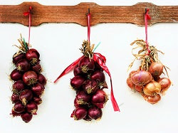 Onions hanging