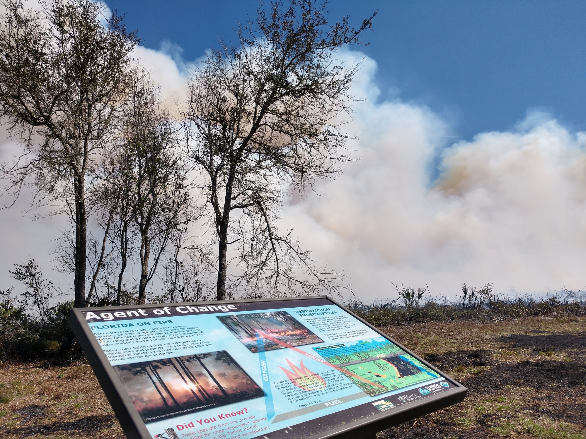 A fire burns at Big Talbot Island in front of an interpretive sign