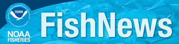 NOAA Fish News