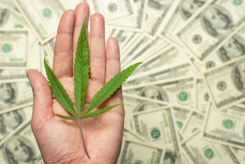 A sheet of marijuana for money_ dollars and cannabis_ a legal and black market business