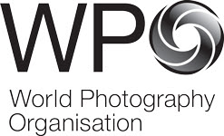 WPO Logo -BLACK MASTER 1