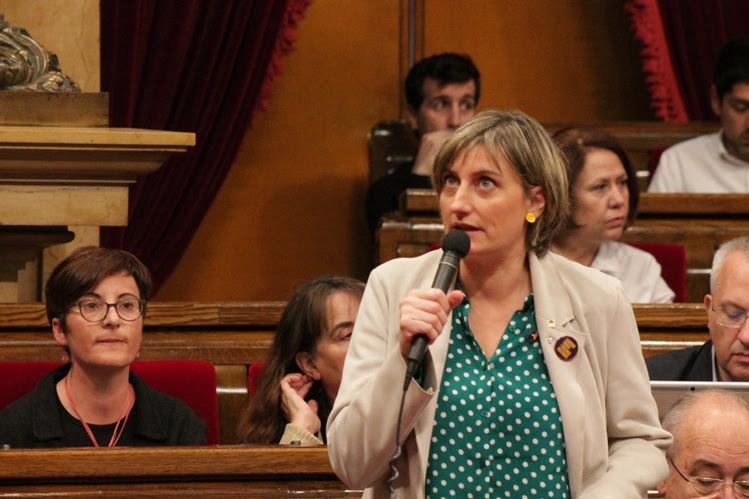 La consellera Vergés, en la seva intervenció al Parlament.