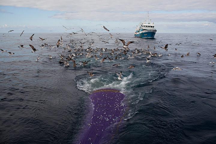 Citoyen, ta mer est en danger … là maintenant !