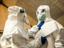 Ebola vaccine candidate elicits strong immune response in monkeys