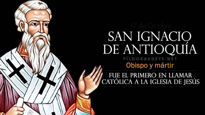 san ignacio de antioquia obispo martir llamo catolica a la iglesia biografia vida