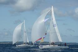 J/105s sailing Marblehead