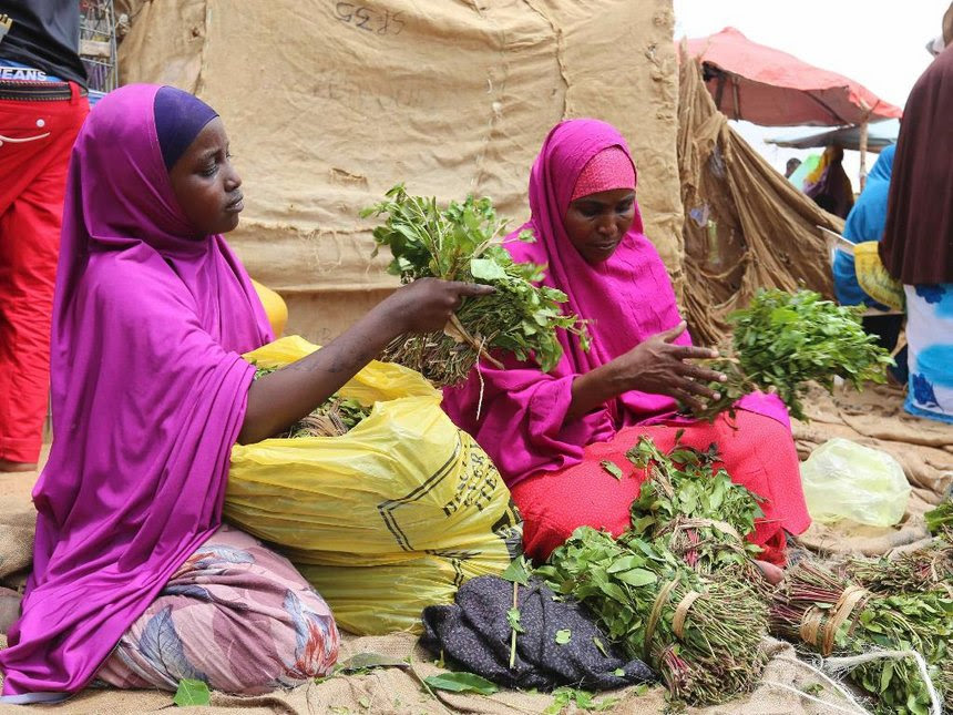 A woman and her daughter tie miraa into small bundles in Mogadishu