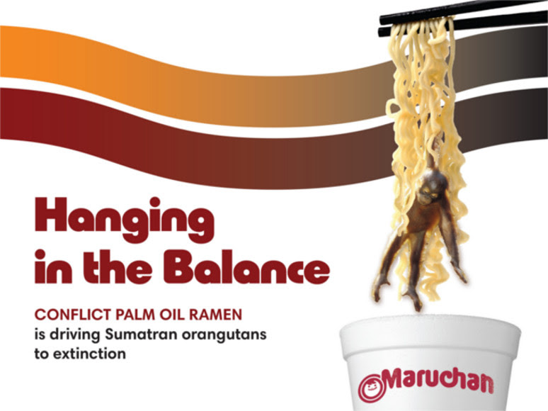 Last week we exposed Maruchan—America's #1 instant noodle<br /> brand—as the 'worst performing' laggard in the Snack Food 20 as it had<br /> yet to make any commitments regarding its use of the controversial<br /> ingredient: Conflict Palm Oil.