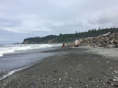 Photo of the coast along Quinault Indian Nation Reservation.