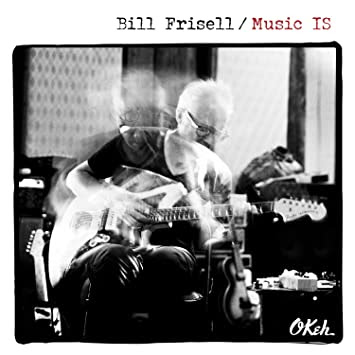 Image result for music is bill frisell