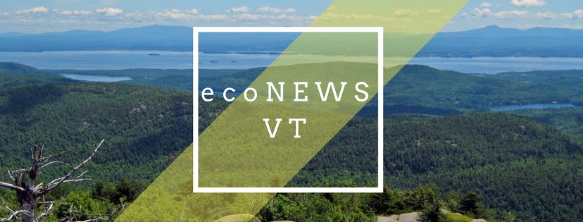 ecoNEWS VT Winter 2020-21 Newsletter