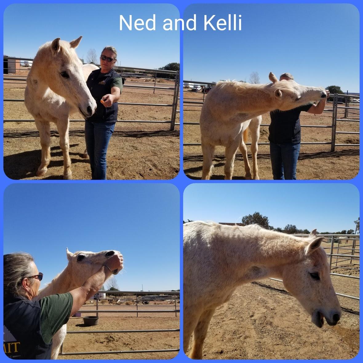20210301 Ned and Kelli bodywork