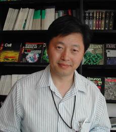 Hongyue Dai