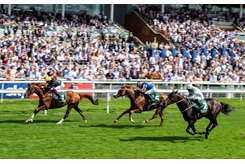 Stradivarius gallops clear to win his second Lonsdale Cup at York