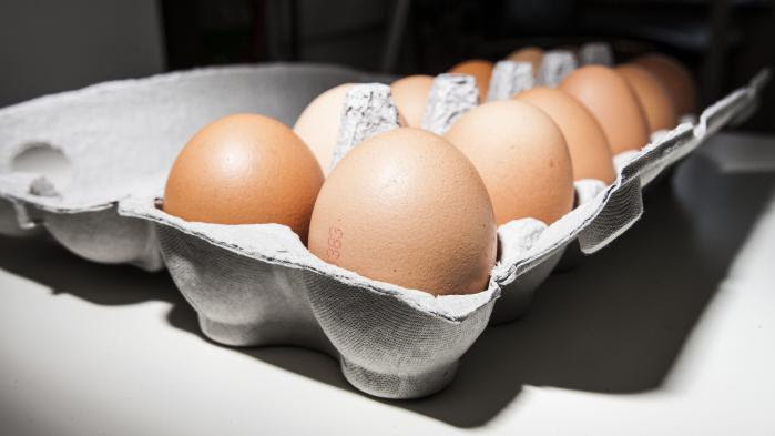 L'article à lire pour comprendre le scandale des œufs contaminés au fipronil