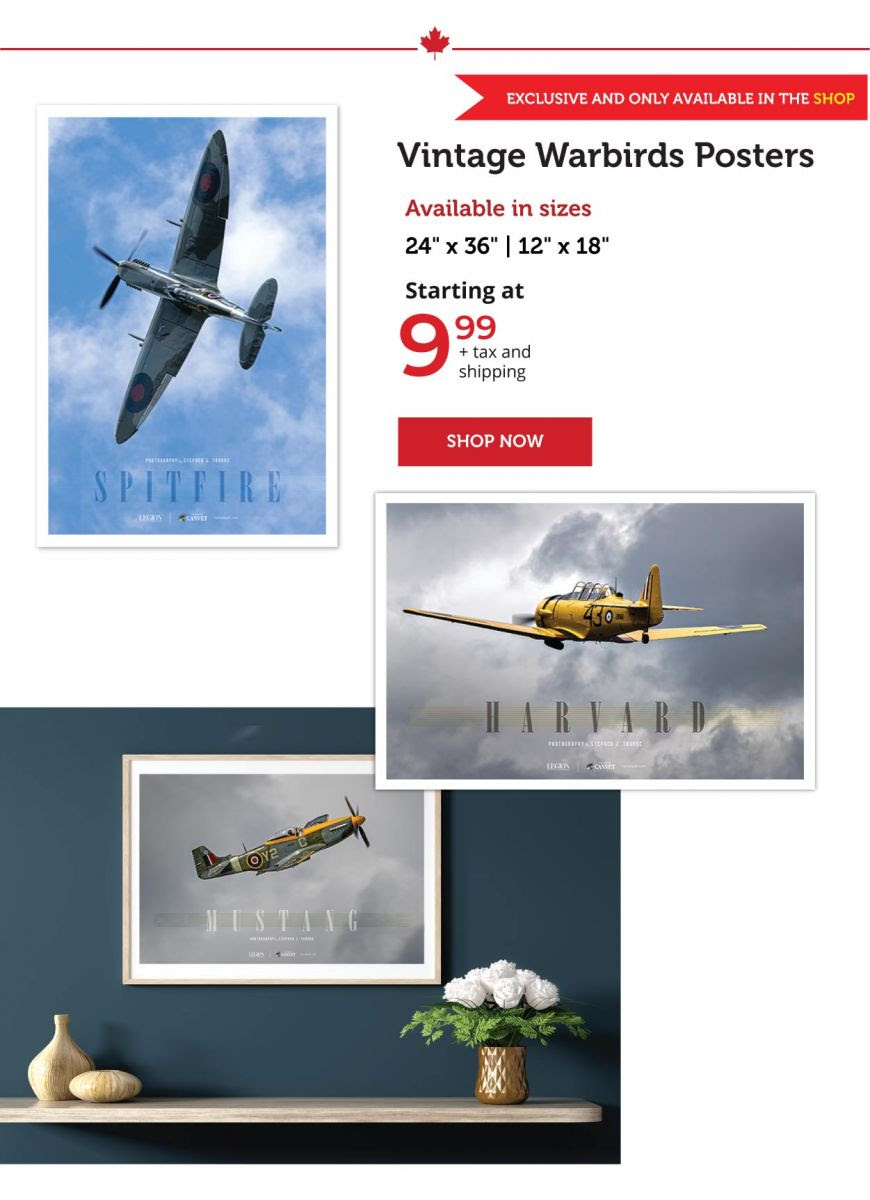 Vintage Warbirds posters now on sale!