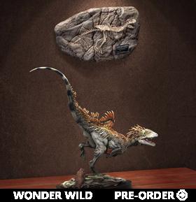 Wonder Wild Concavenator