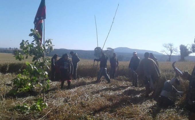 Comunidades mapuche en resistencia se movilizan por autonomía y justicia en la Araucanía y Biobío