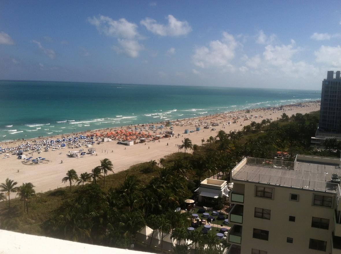 Ocean view V
