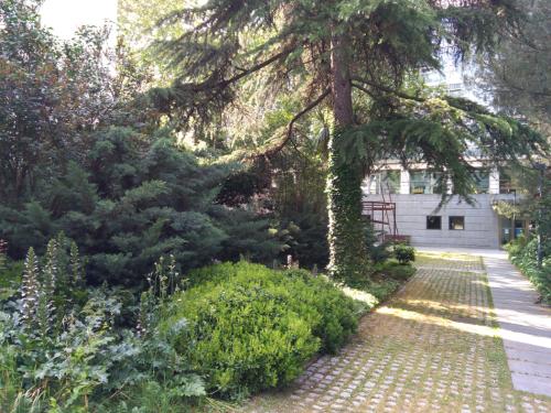 jardinIngles.png