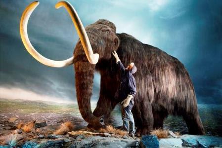 mamuth-klonopoiisi-123315