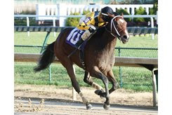 Needs Supervision wins a Nov. 24 allowance/optional claimer at Churchill Downs