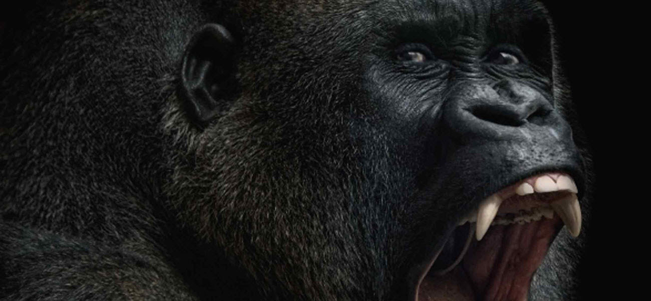 "Starwarp Concepts Adds ""King Kong"" To Its Illustrated Classics Line"