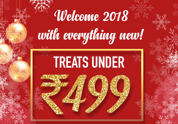 Welcome 2018 with Treats under Rs. 499