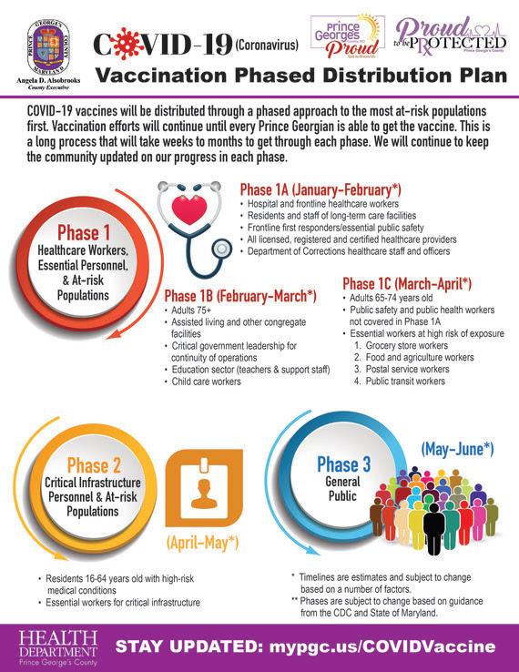 Vaccine Phases Graphic
