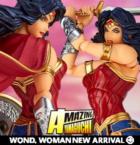 DC Comics Amazing Yamaguchi Revoltech No.017 Wonder Woman
