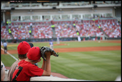 The figure above is a photograph of a boy watching a baseball game.