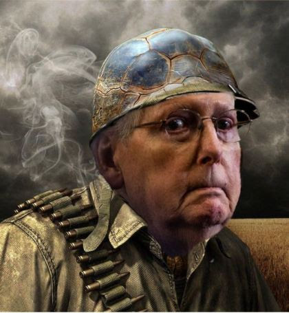 mitch mcconnell turtle